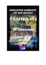 "Executive summary of the draft report ""Tsunami impact on workers in Thailand"""